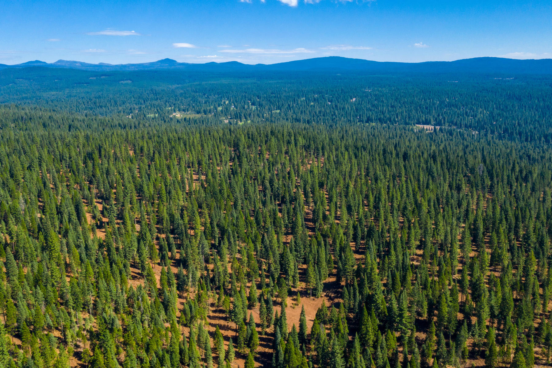 Additional photo for property listing at 103-02 Clifford Drive Lake Almanor, California 96137 103-02 Clifford Drive Lake Almanor, California 96137 United States