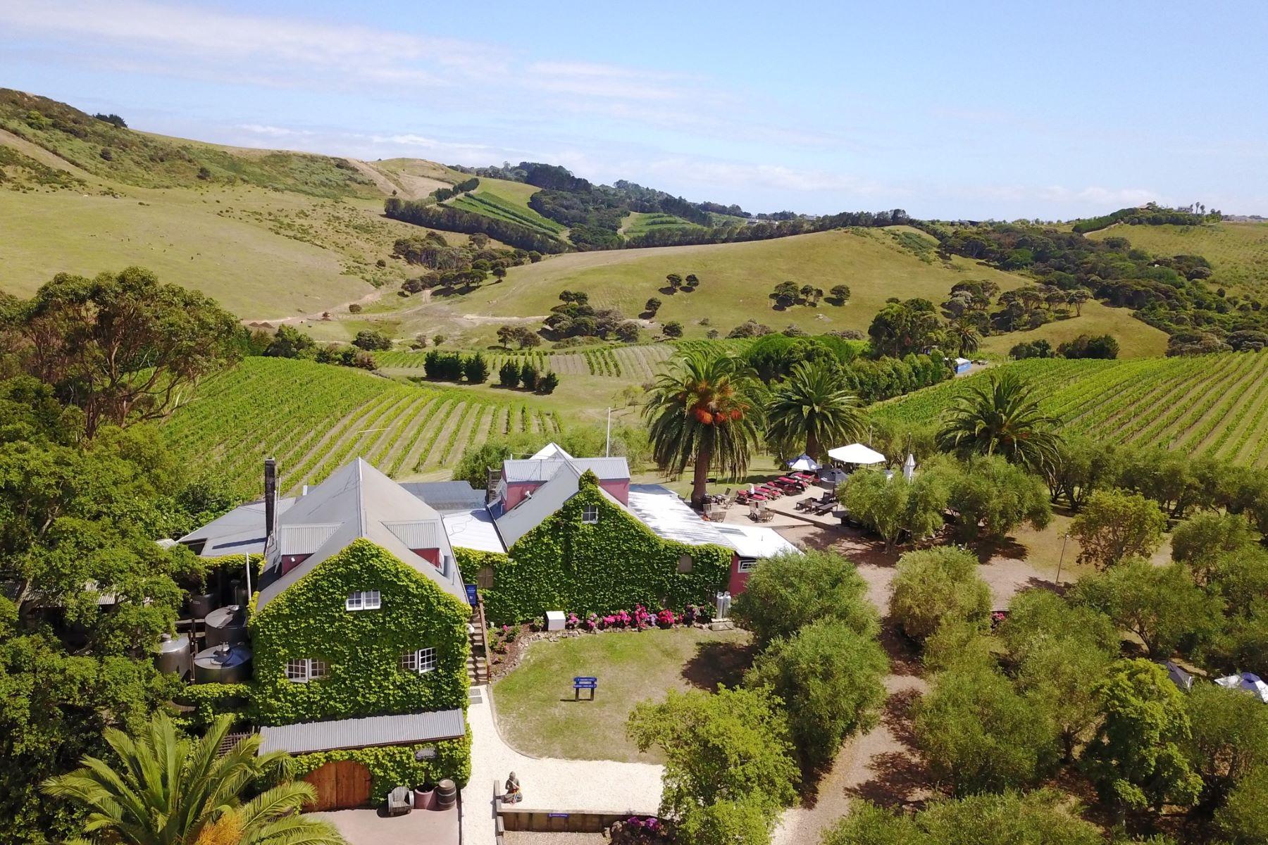 Vineyard Real Estate for Sale at Stonyridge Vineyard Auckland, Auckland New Zealand