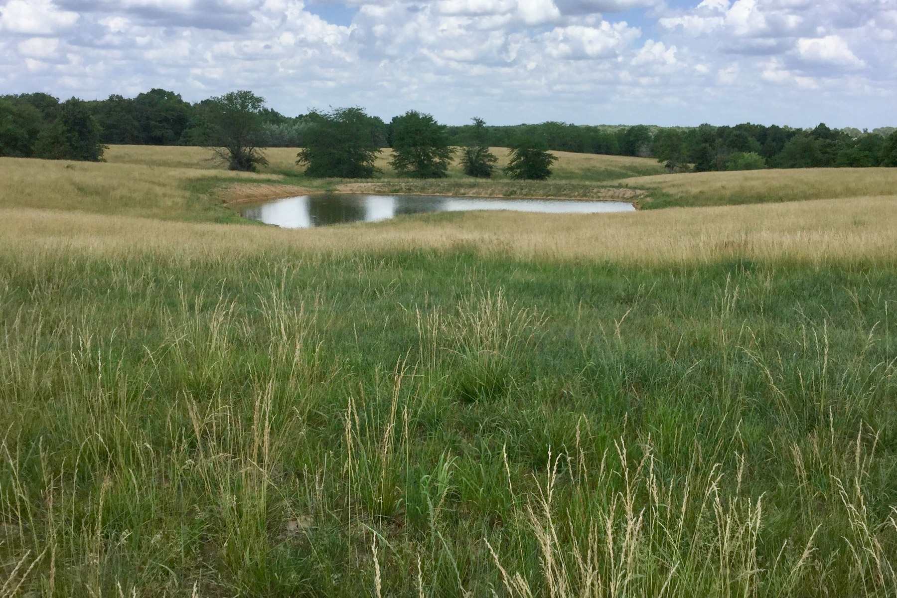 Farm and Ranch Properties for Sale at Thompson Ranch 2,200 Acre Ranch in Northeast Missouri 8139 County Road 248 Shelbyville, Missouri 63469 United States