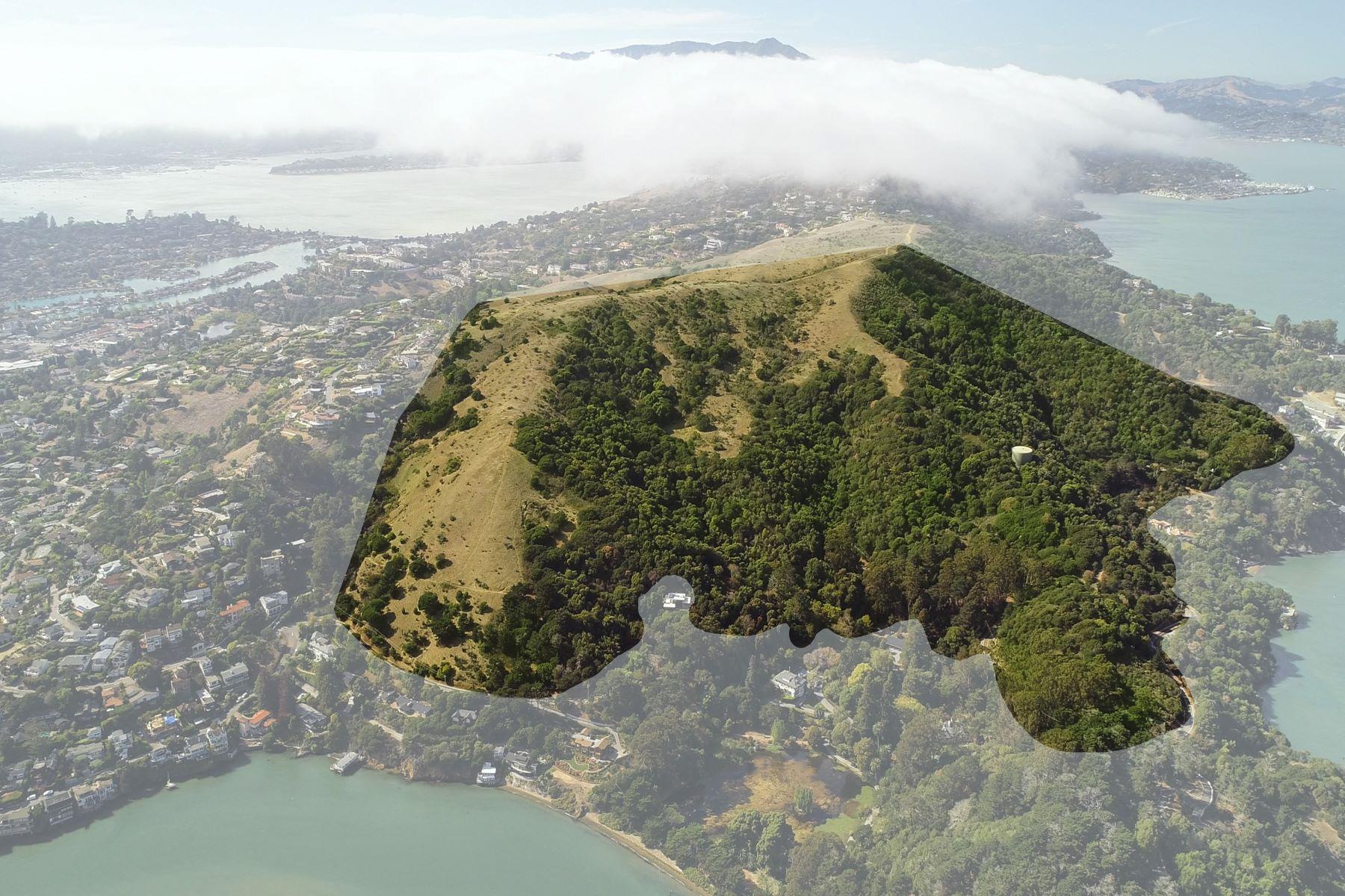 Additional photo for property listing at  Tiburon, Калифорния 94920 Соединенные Штаты