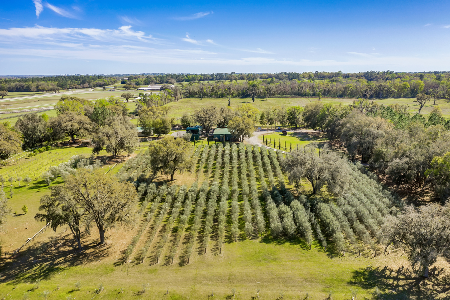 Single Family Homes für Verkauf beim OCALA 9501 W Highway 326, Ocala, Florida 34482 Vereinigte Staaten