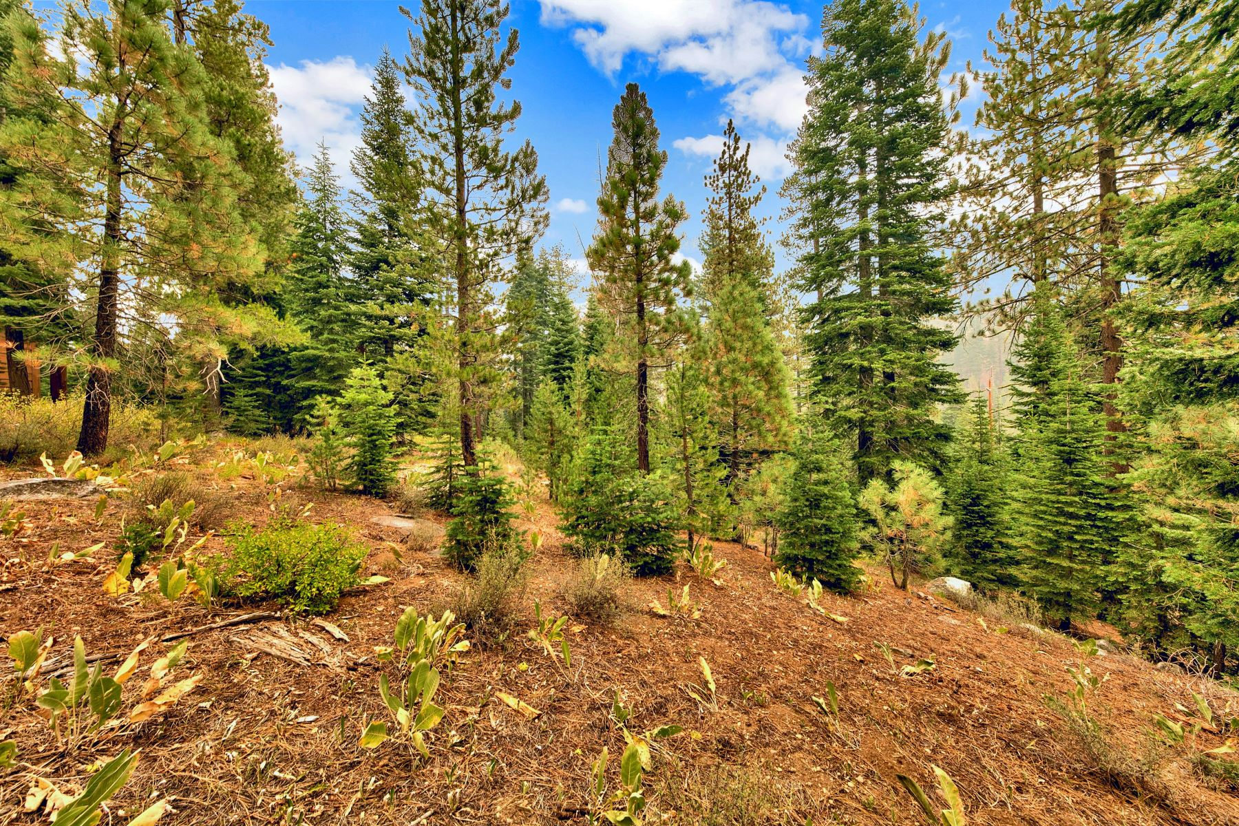 Land for Active at Squaw Valley Ski Area One Acre Lot 132 Rock Garden Court Olympic Valley, California 96146 United States