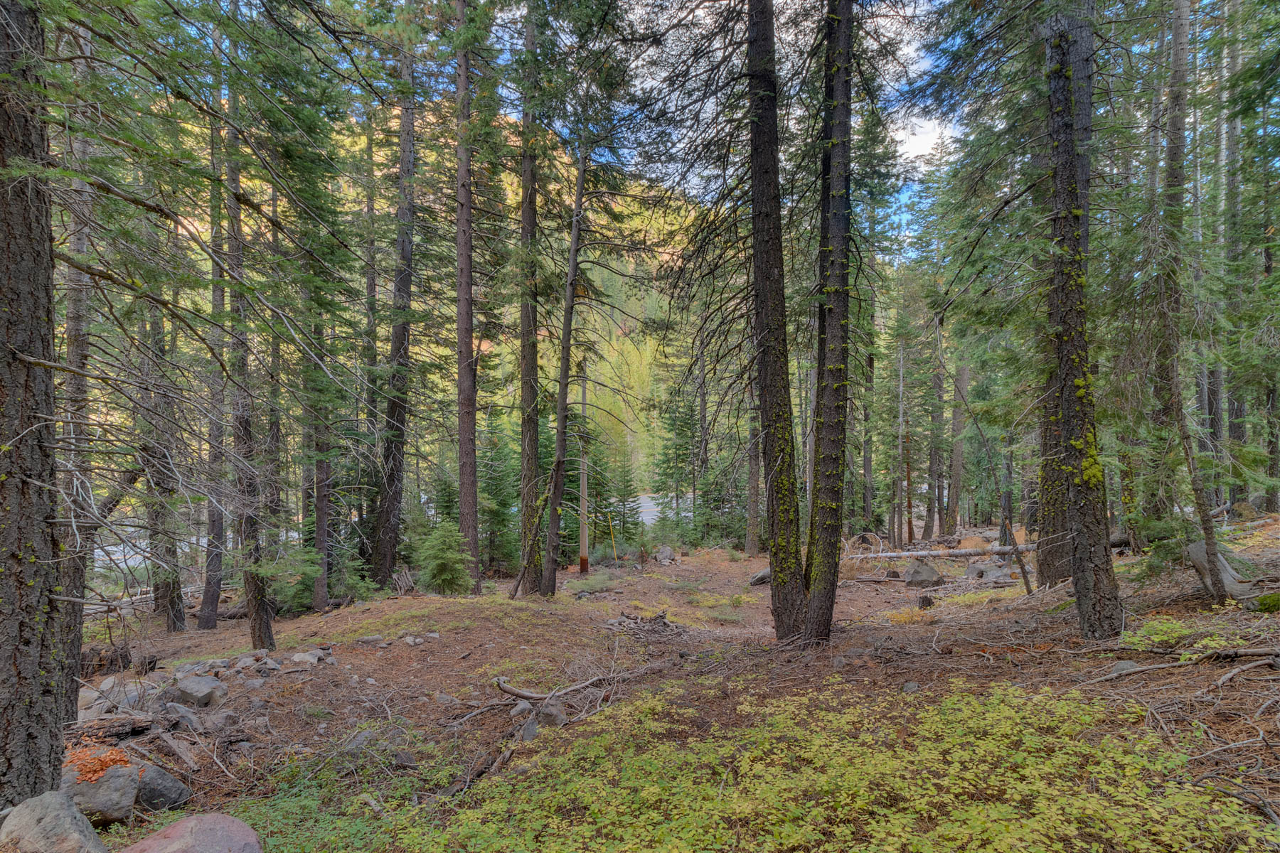 Additional photo for property listing at 7595 River Road, Truckee, CA 96161 7595 River Road Truckee, California 96161 United States
