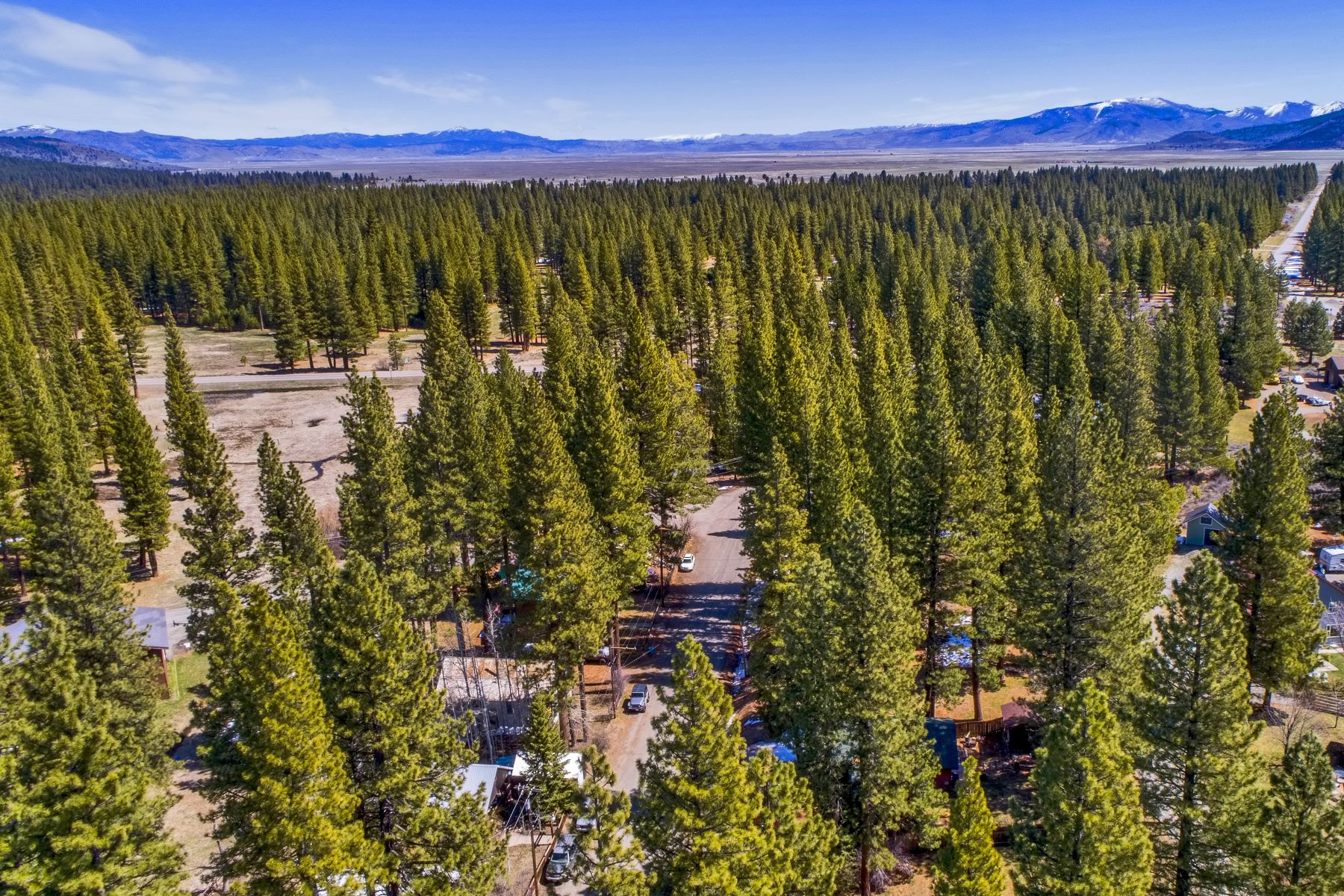 Land for Active at Affordable lot in Calpine 117 Calpine Avenue Calpine, California 96124 United States