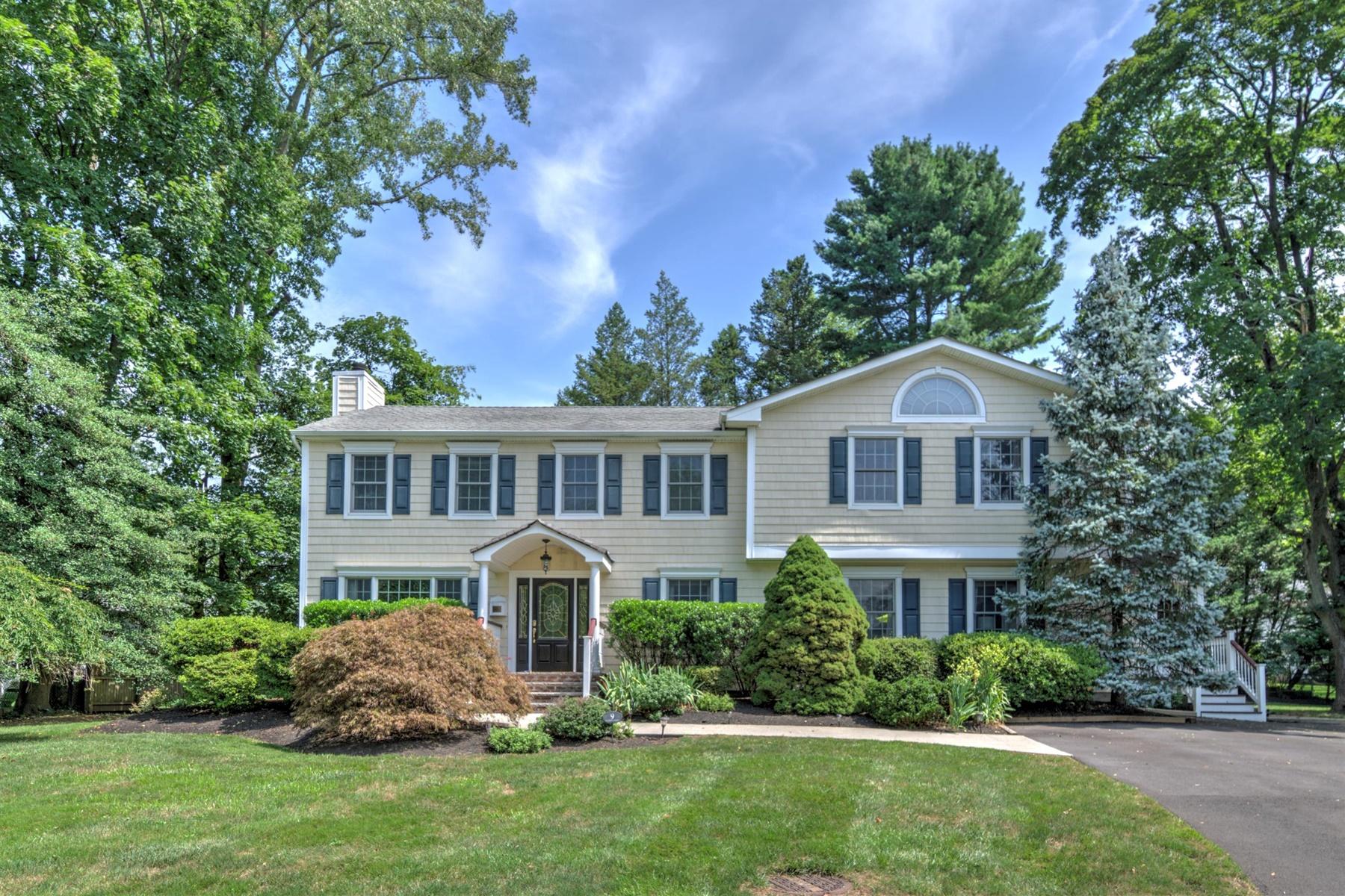 Single Family Homes pour l Vente à Little Silver, New Jersey 07739 États-Unis