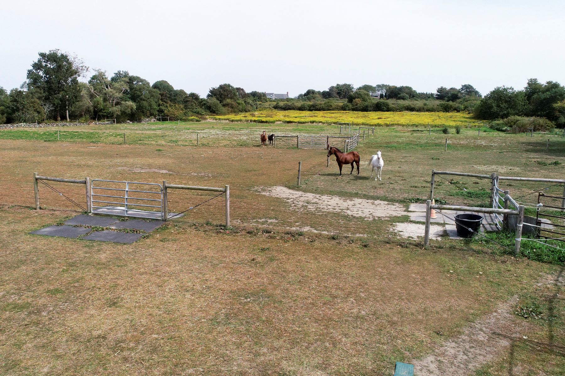 Additional photo for property listing at Sachuest Farm 516 Third Beach Road Middletown, Rhode Island 02842 United States